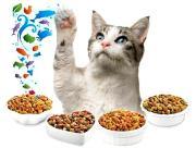Mengatasi Kucing Tidak Mau Makan