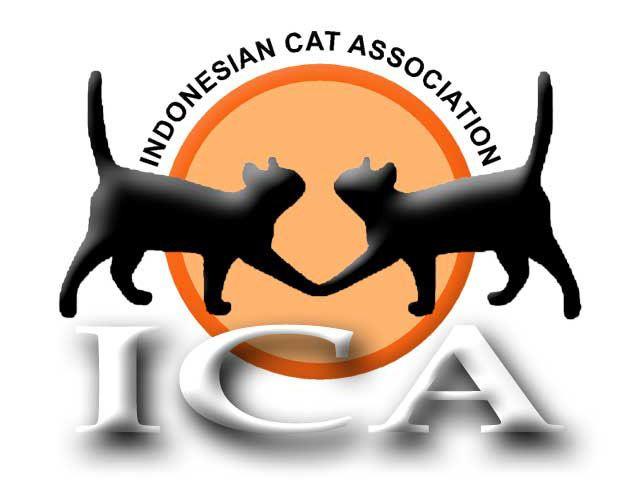 Asosiasi Club Kucing Di Indonesia Ica Cfi Csfi Www Kucing Biz